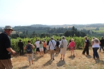 Bloggers heading into the vineyards