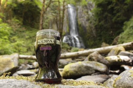 Copa di Vino Merlot at Kentucky Falls
